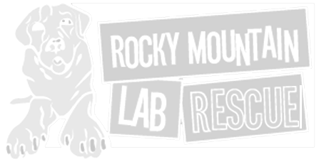 Rocky Mountain Lab Rescue
