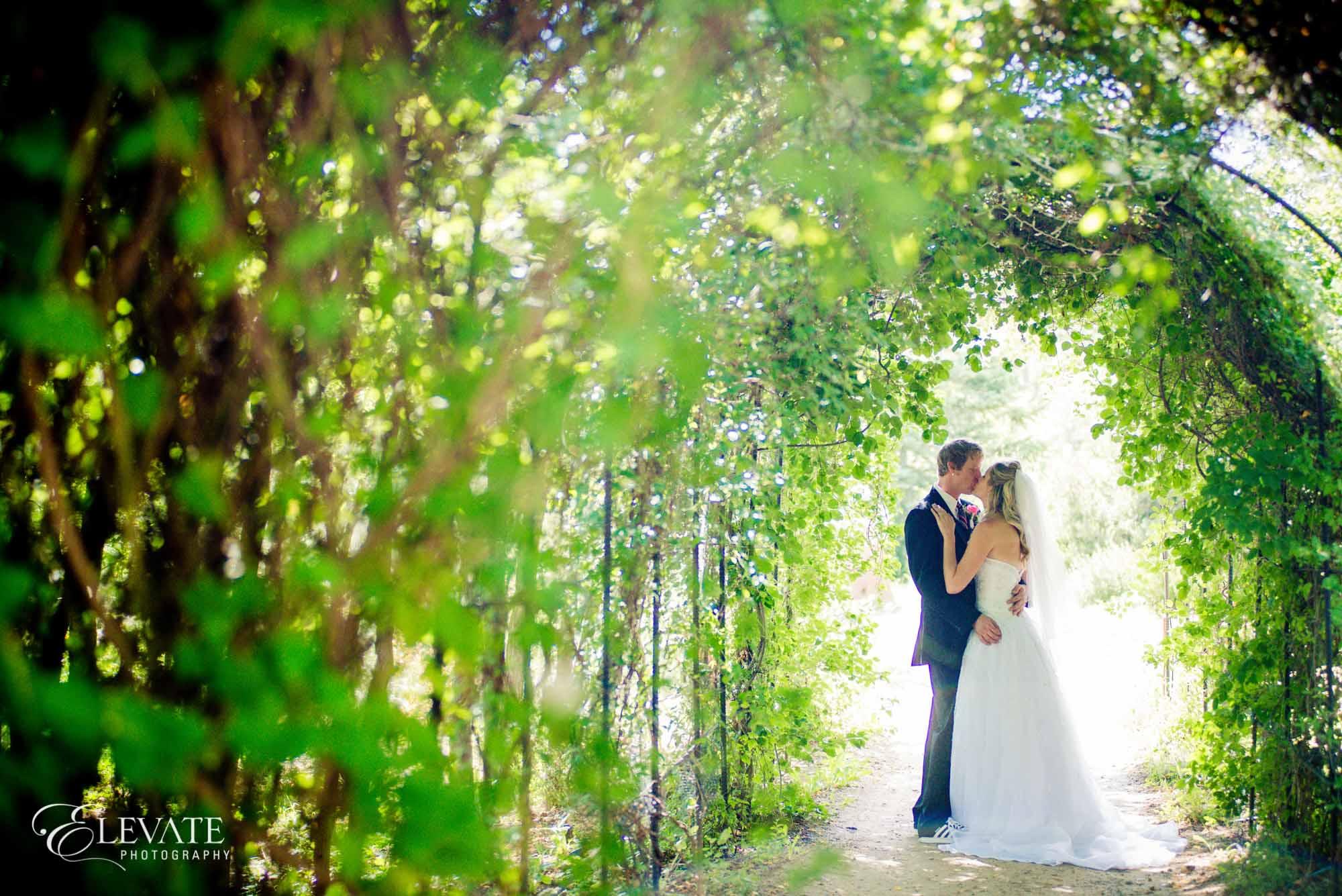 wedding couple colorado springs hillside gardens