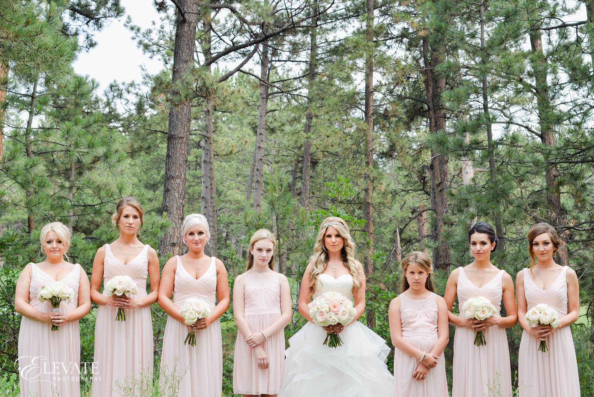 castle rock wedding photos bridal party