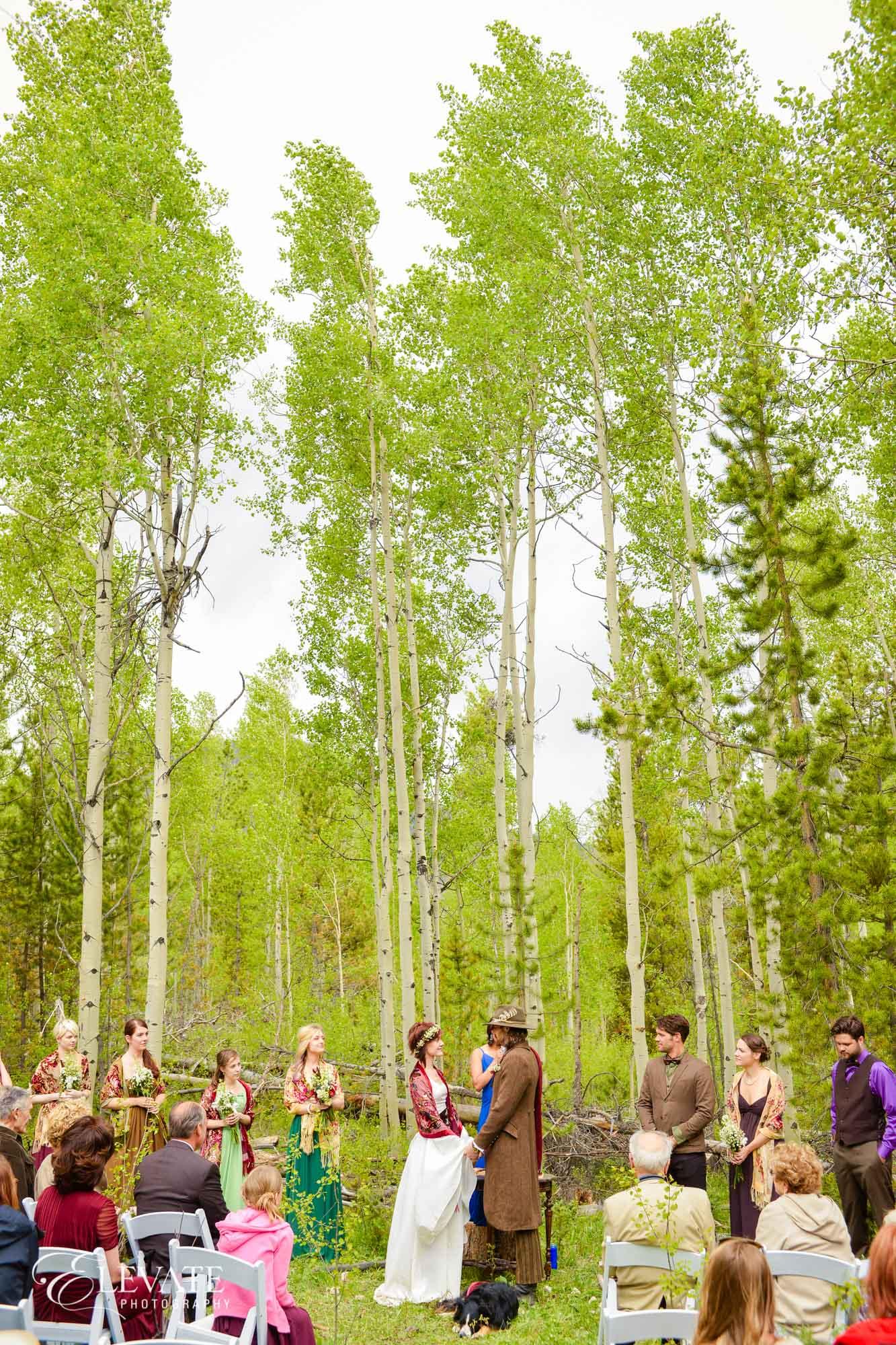 Winter Park Weddings