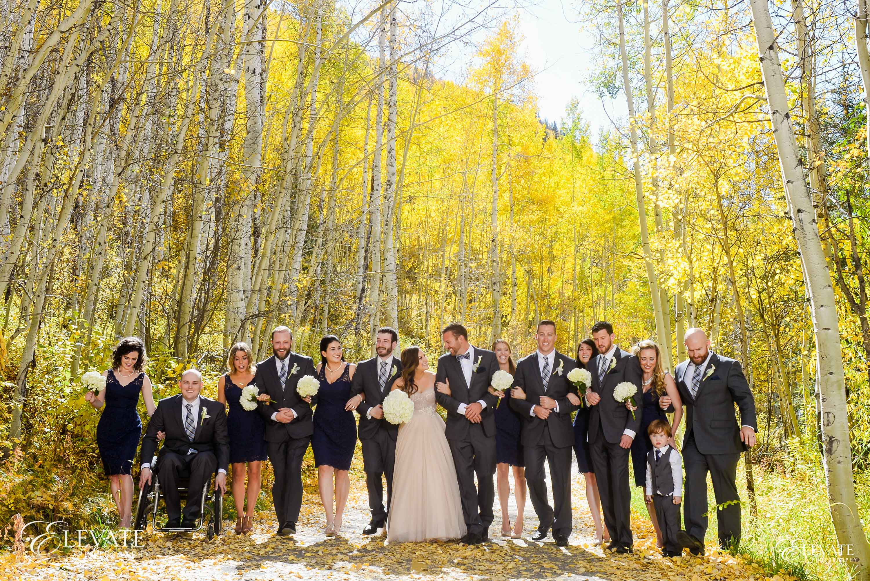 Fall aspen colors wedding party