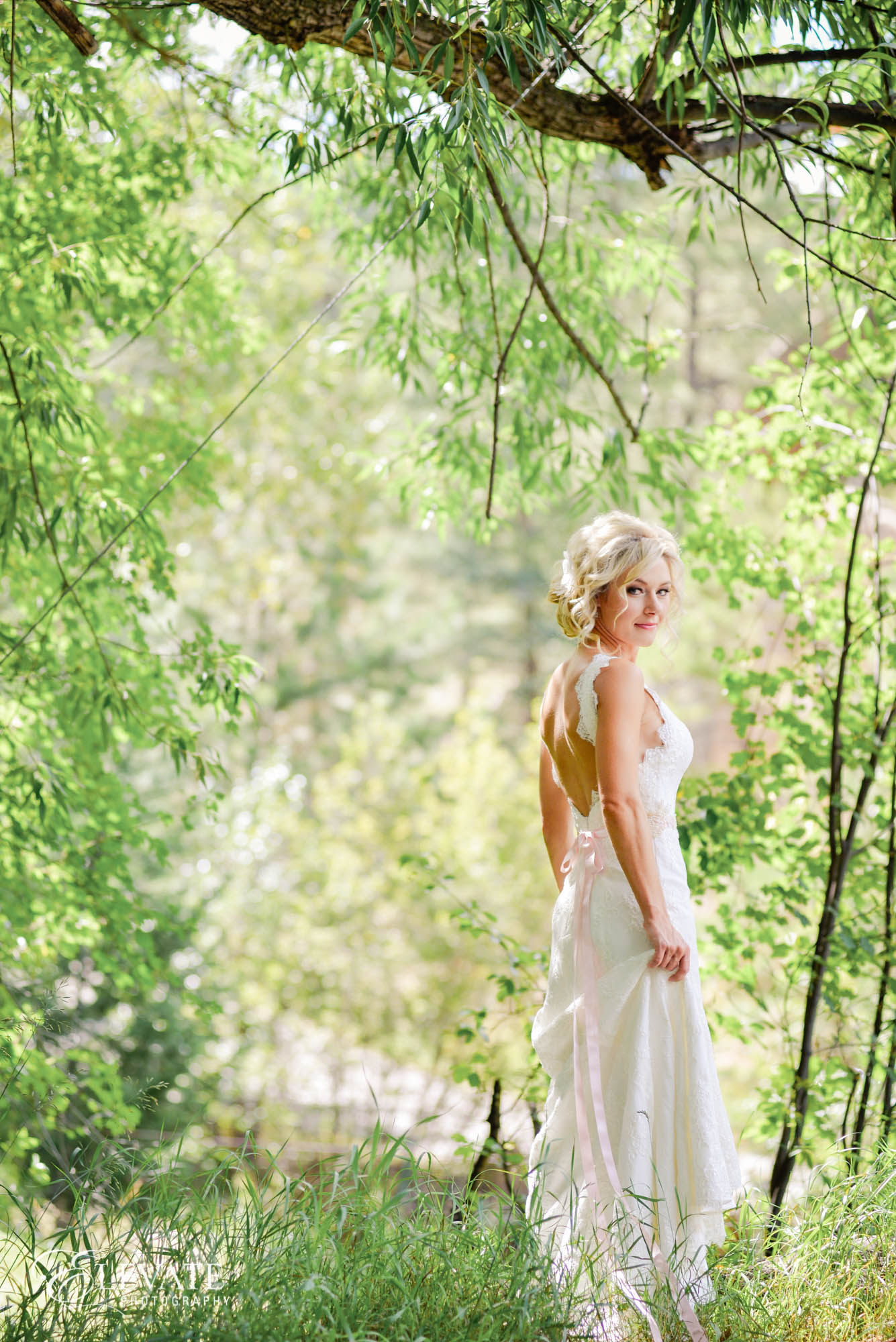 bridal portrait trees
