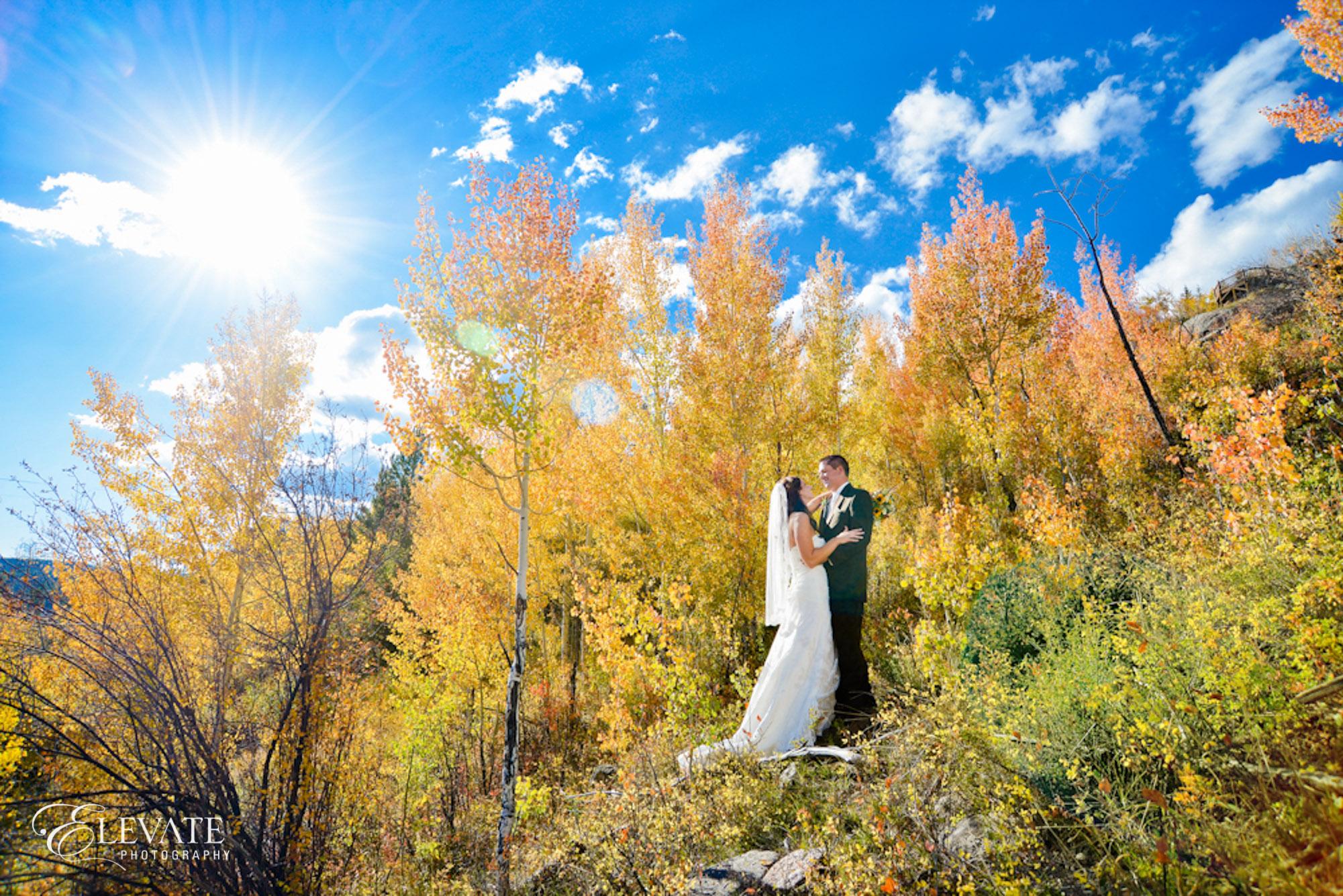fall wedding bride groom aspen yellow