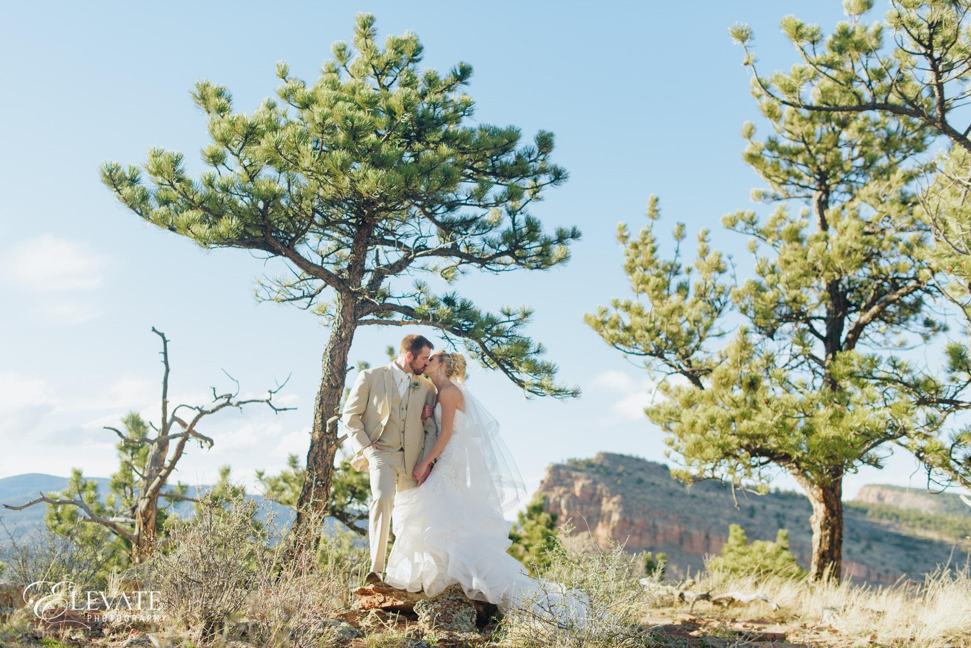 Wedding couple in woods Lyons