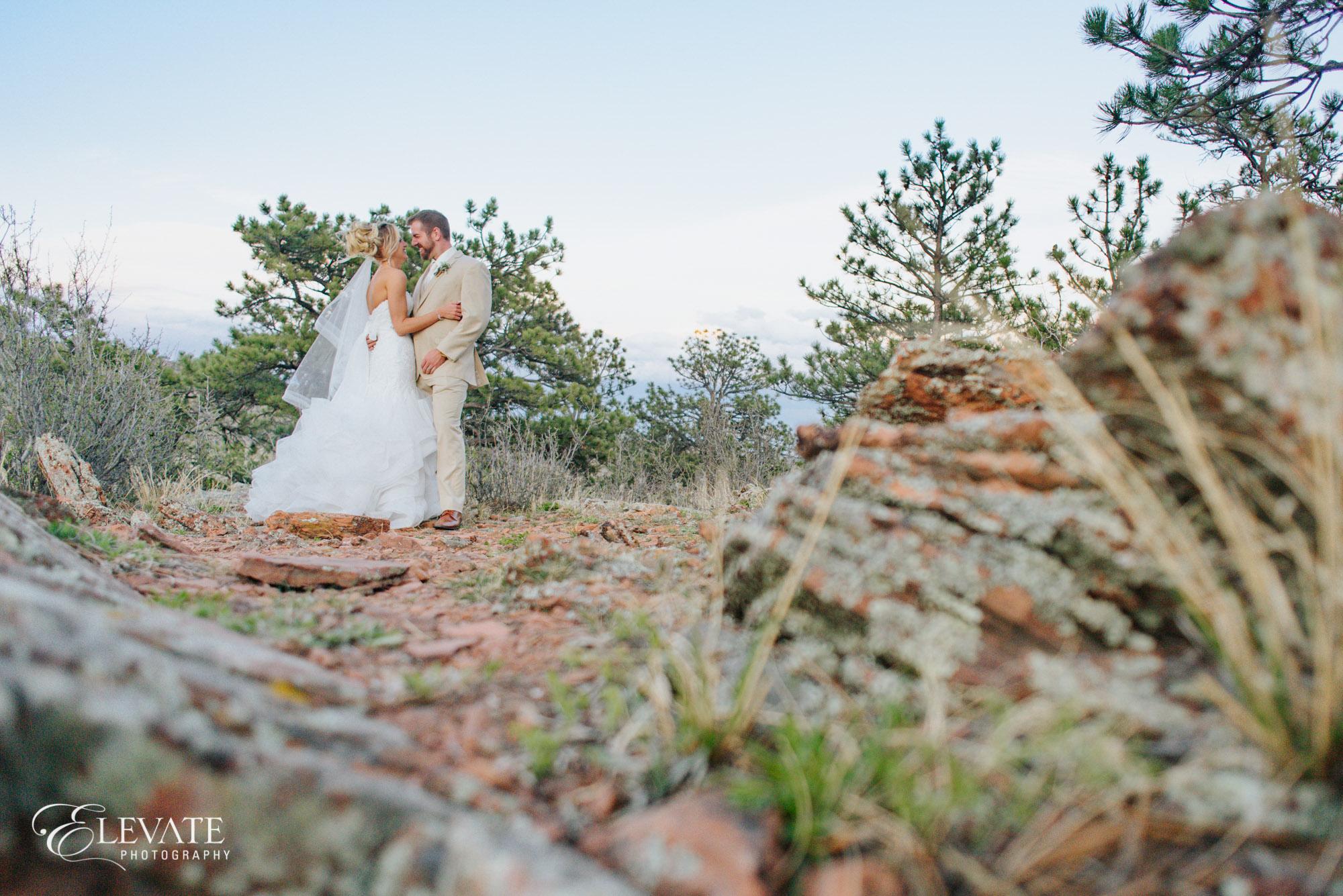 Lyons wedding photos