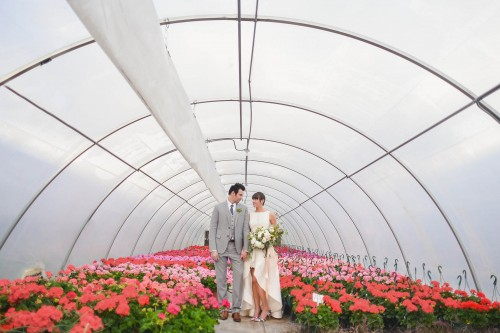 wedding couple in green house colorful plants