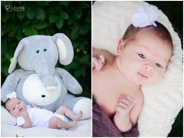 Park Newborn Photos_0010