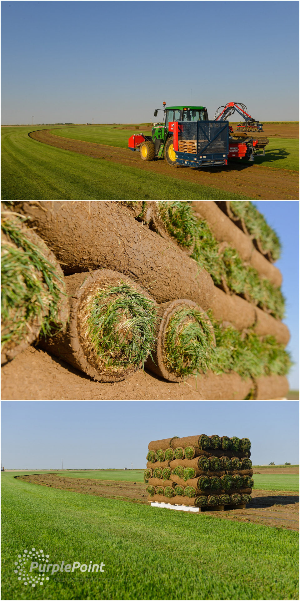scienturfic_sod_farm_marketing_photos-1
