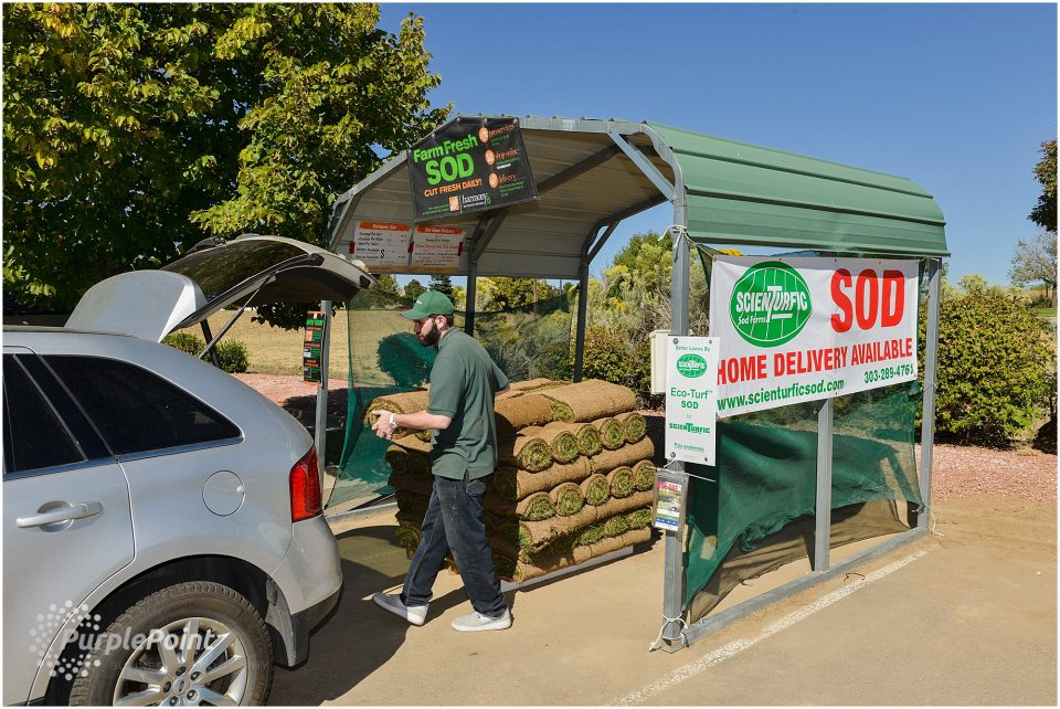 scienturfic_sod_farm_marketing_photos-6