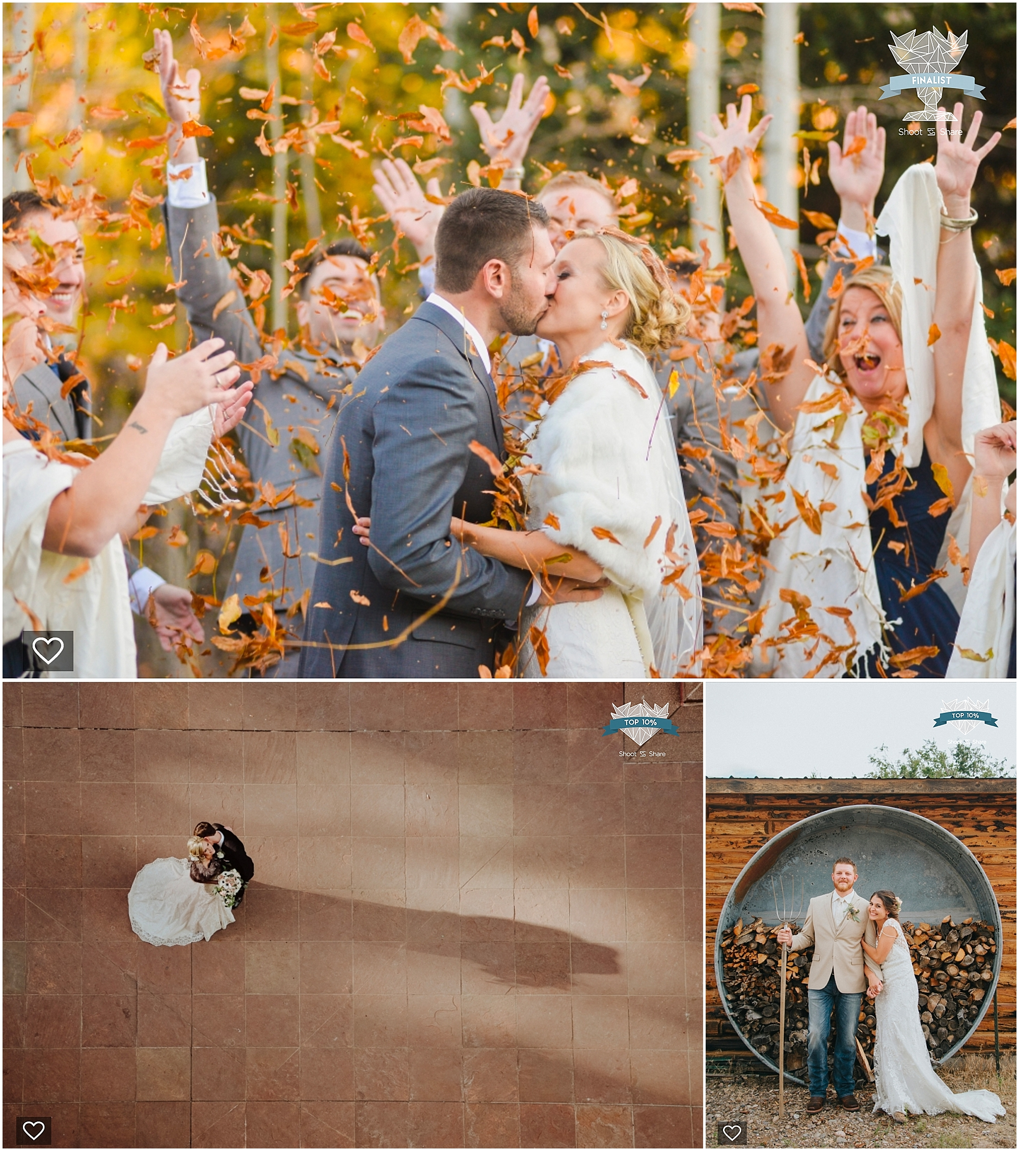 shoot and share, colorado wedding pictures, denver wedding pictures, colorado wedding photographer, fall wedding pictures, yellow leaves, leaves falling