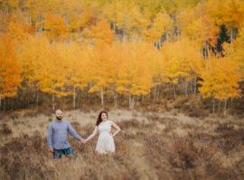 kenosha pass engagement photos