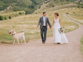 manor house wedding dog
