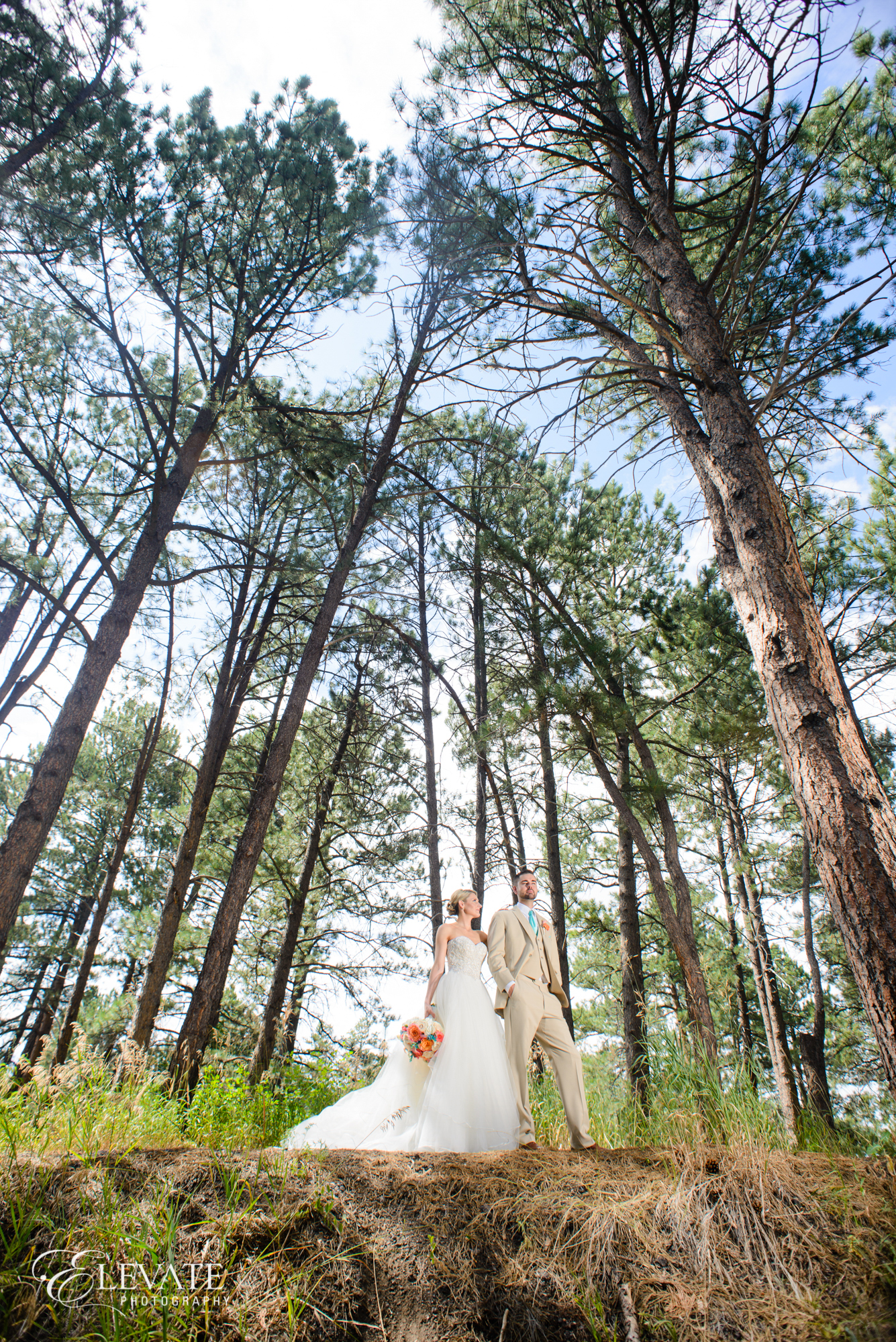 summer castle rock wedding portrait