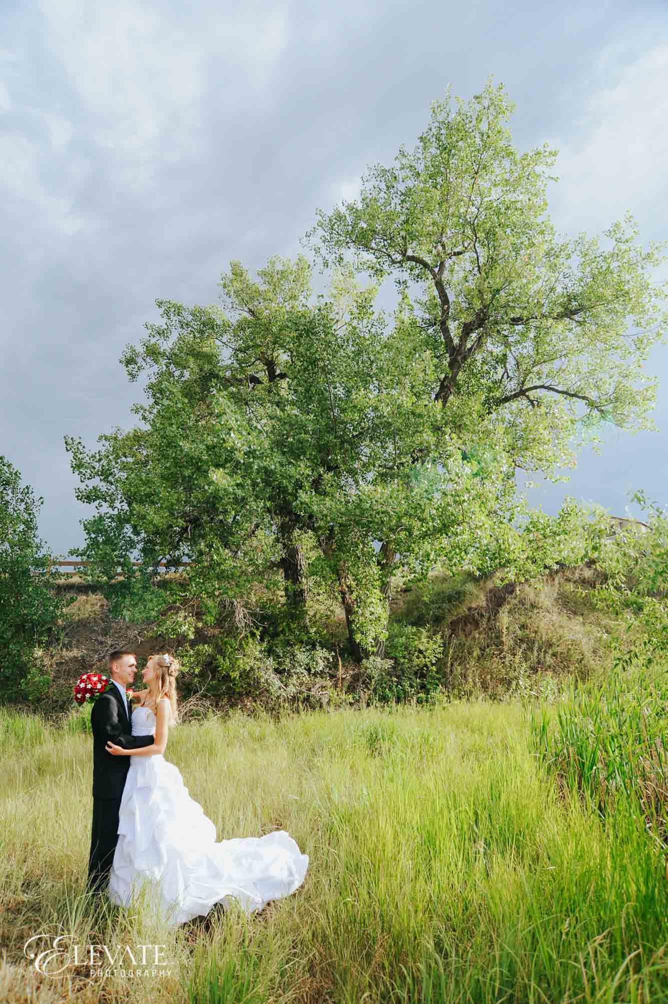 summer aurora wedding field
