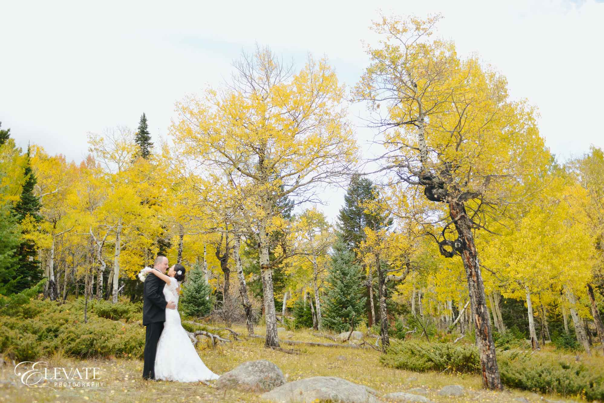 Fall Colors Estes park wedding photos