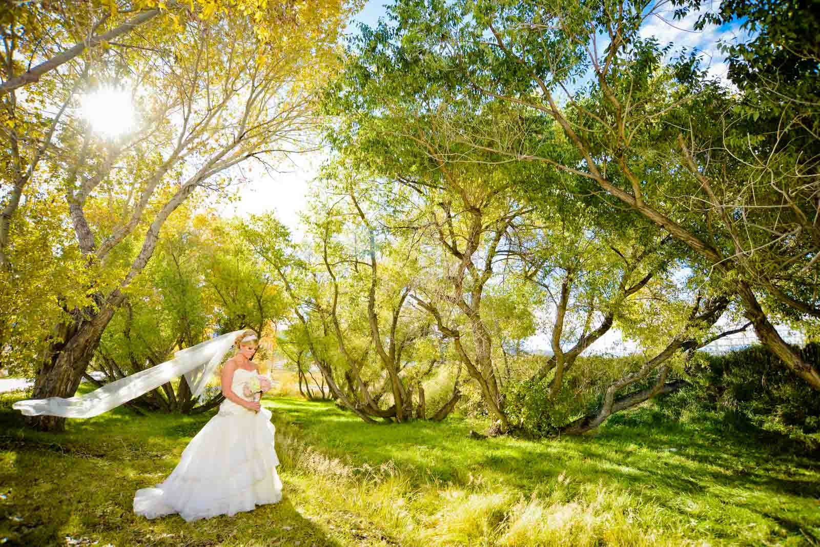 Fall bride in trees