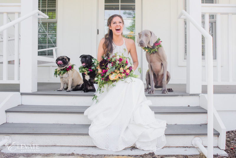 bride with dogs on porch