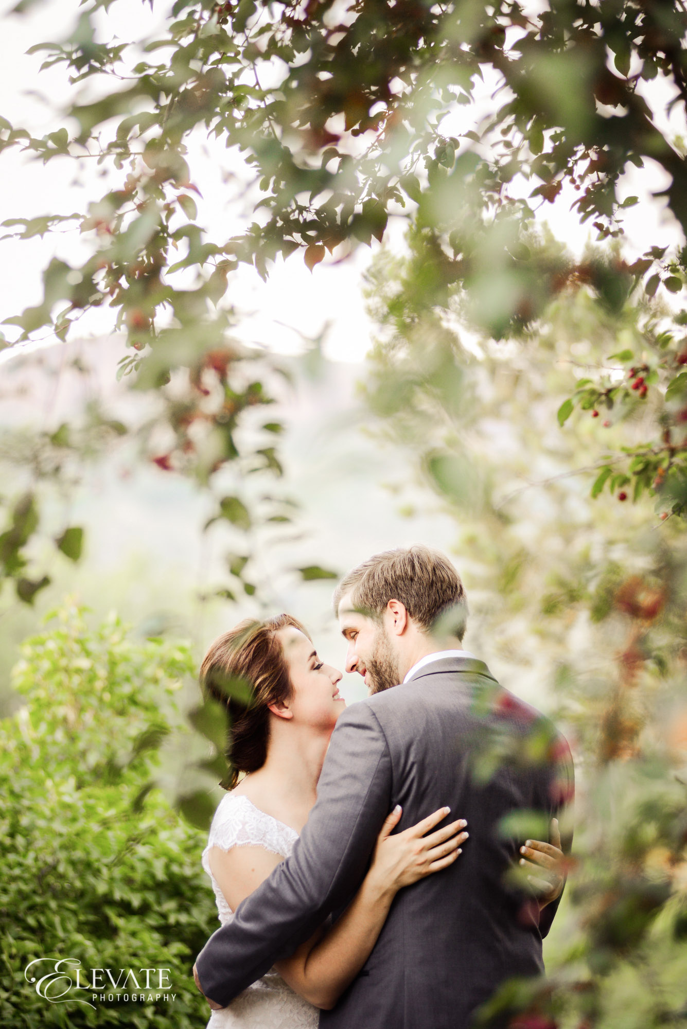 wedding couple in trees
