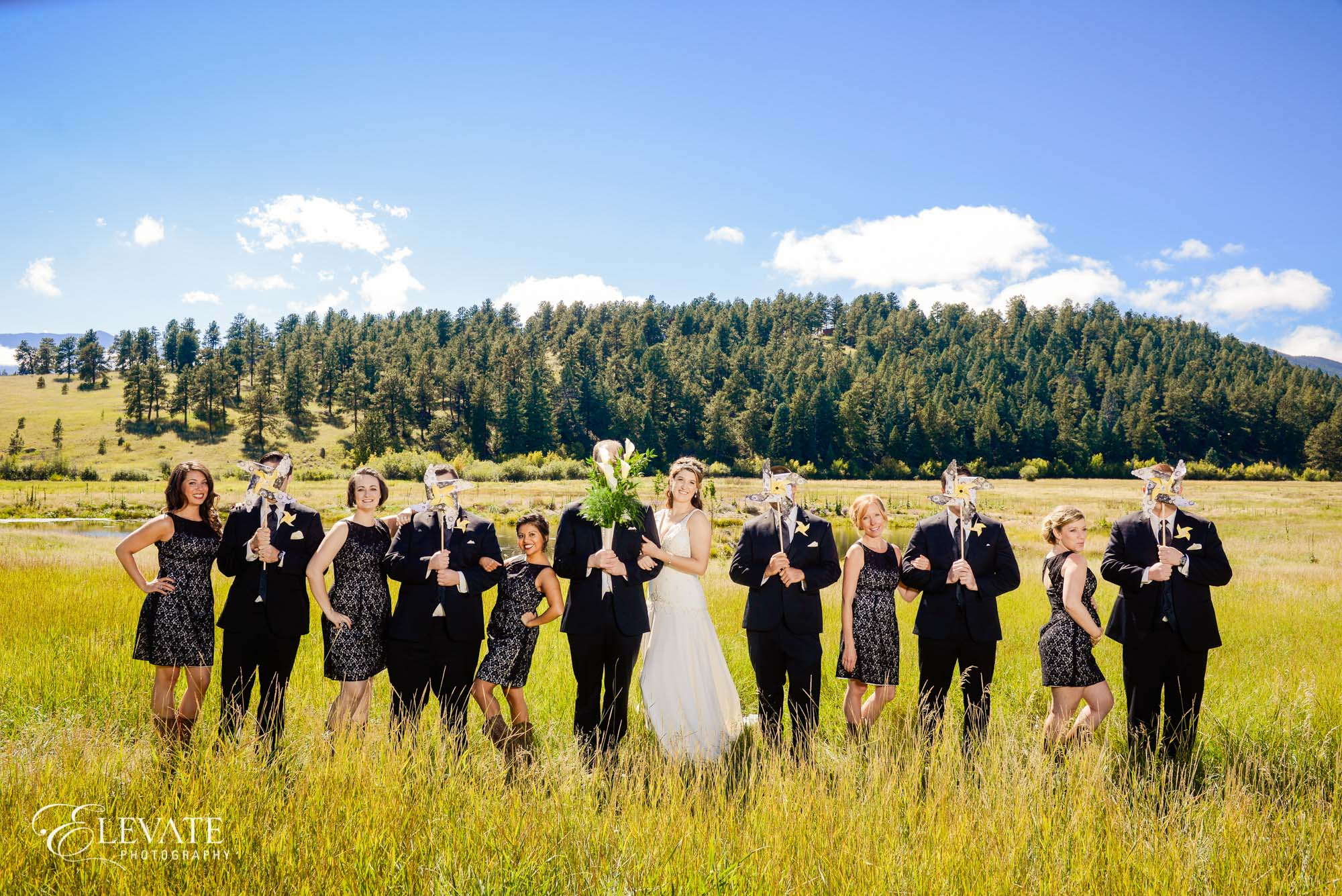 wedding party in mountains