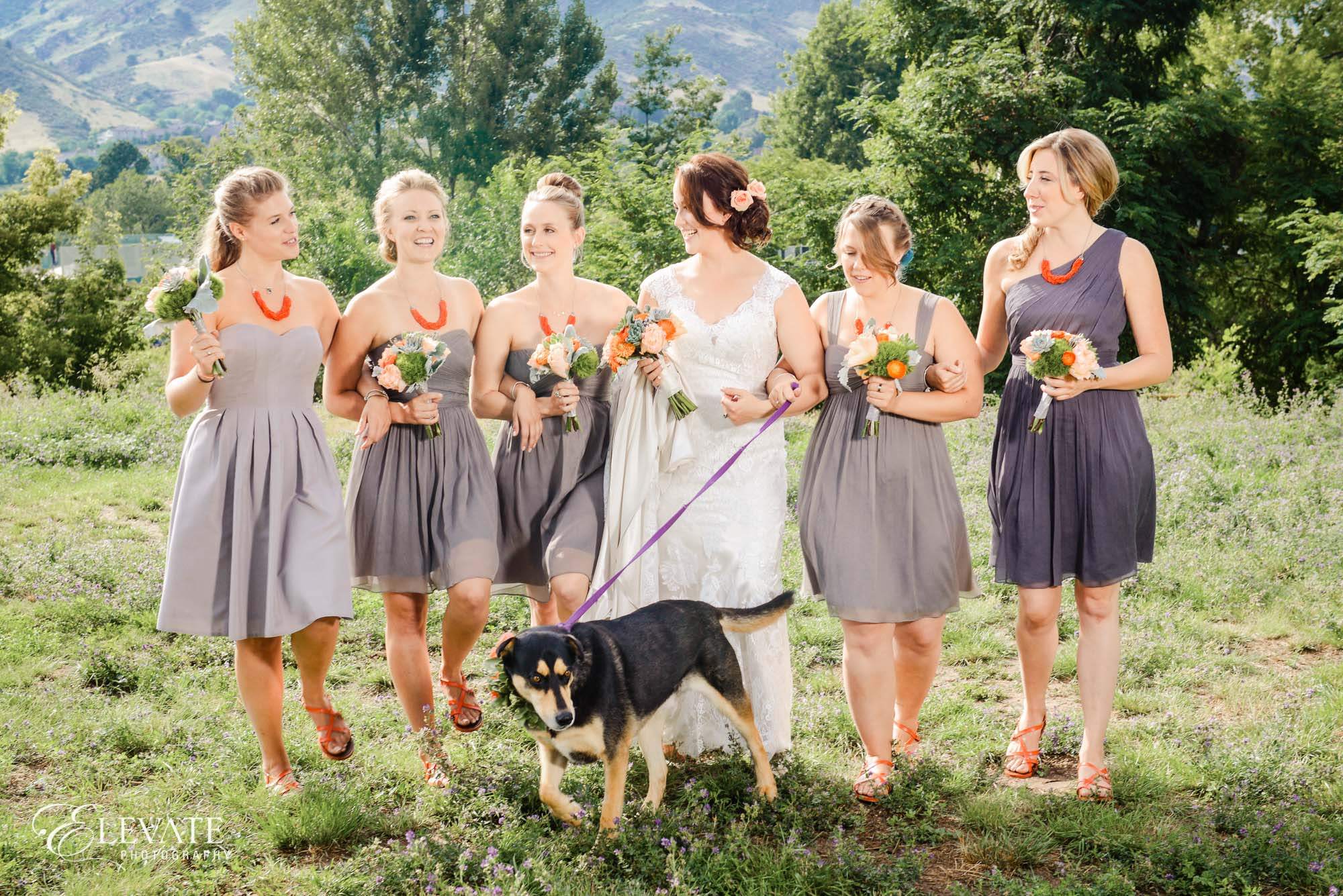 bridesmaids grey dresses dog