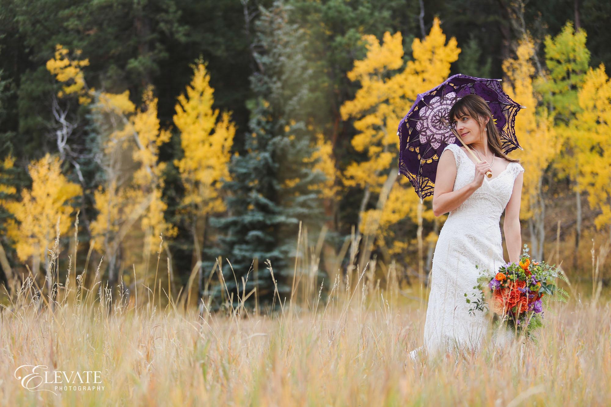 bride purple umbrella