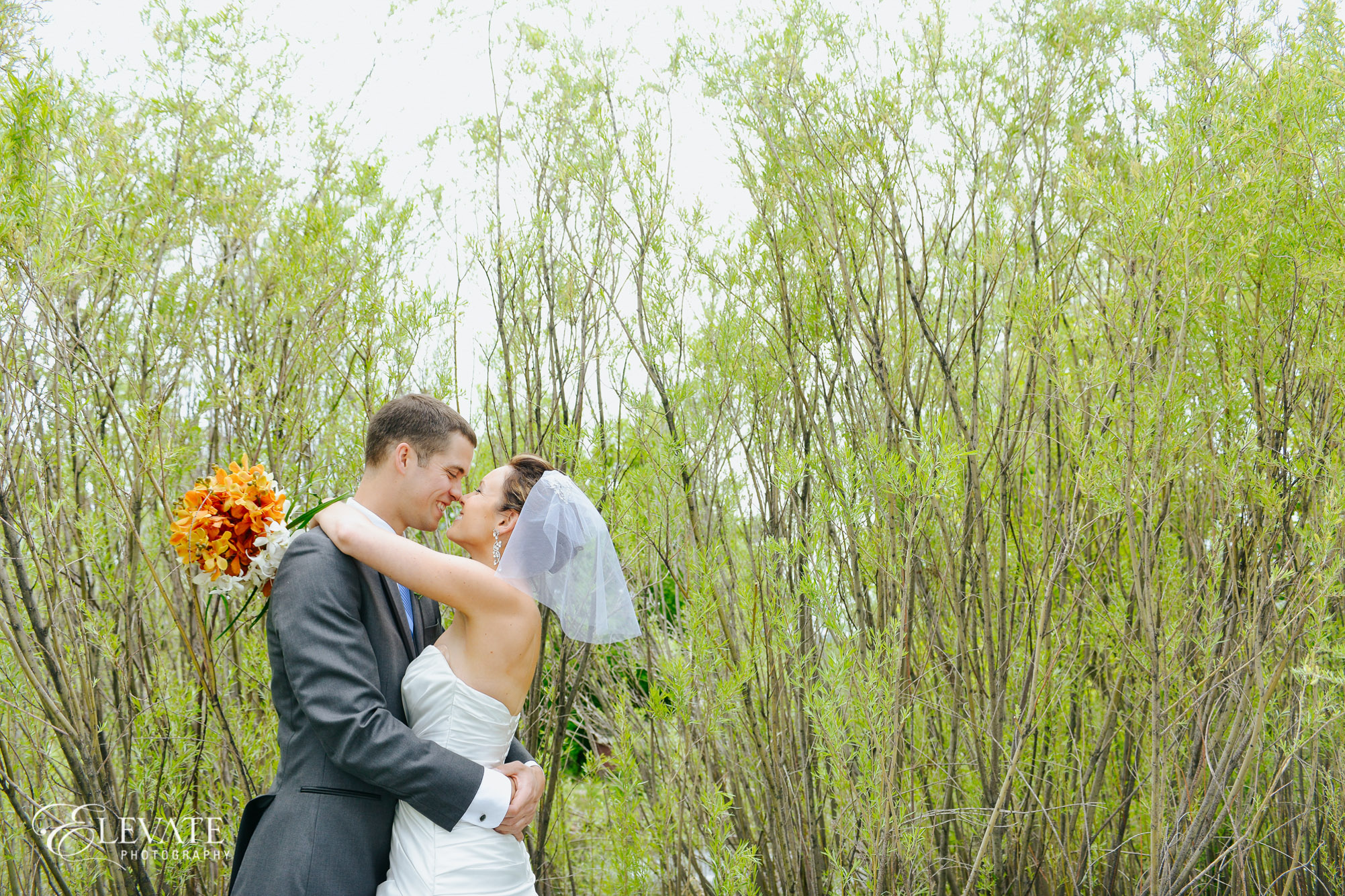 bride and groom kissing in grasses