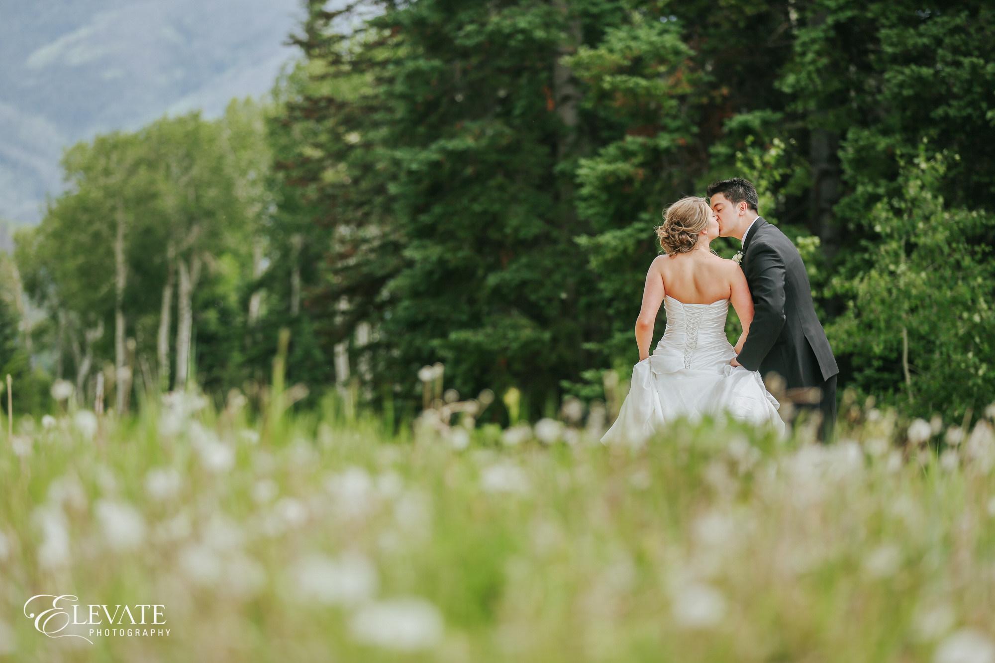 wedding couple kissing in field of steamboat springs