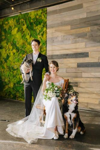 posed wedding couple with dogs