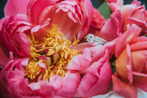 pink peony with ring