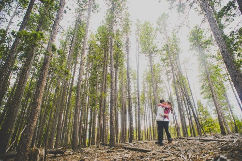 woods camping engagement